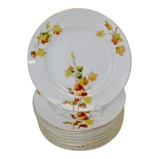 Japanese Porcelain Salad Plates - Set of 10