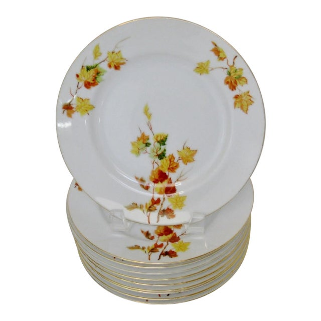 Japanese Porcelain Salad Plates - Set of 10 For Sale
