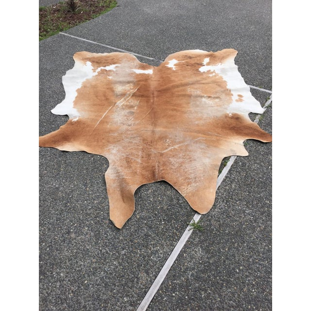 Authentic Country Style Cowhide Rug - 6' X 7' - Image 7 of 7