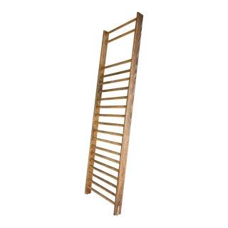 1950s Belgian Exercise Ladder For Sale