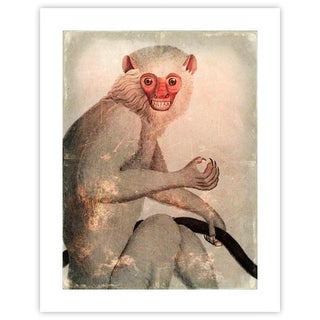 Antique 'Distressed Monkey' Archival Print For Sale