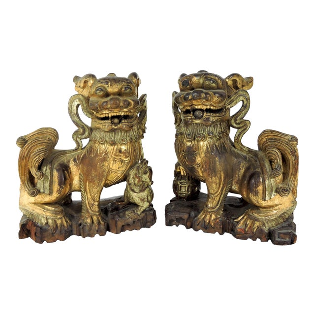 Antique Chinese Carved Gilt Wood Temple Foo Lions- a Pair (Foo Dogs) For Sale