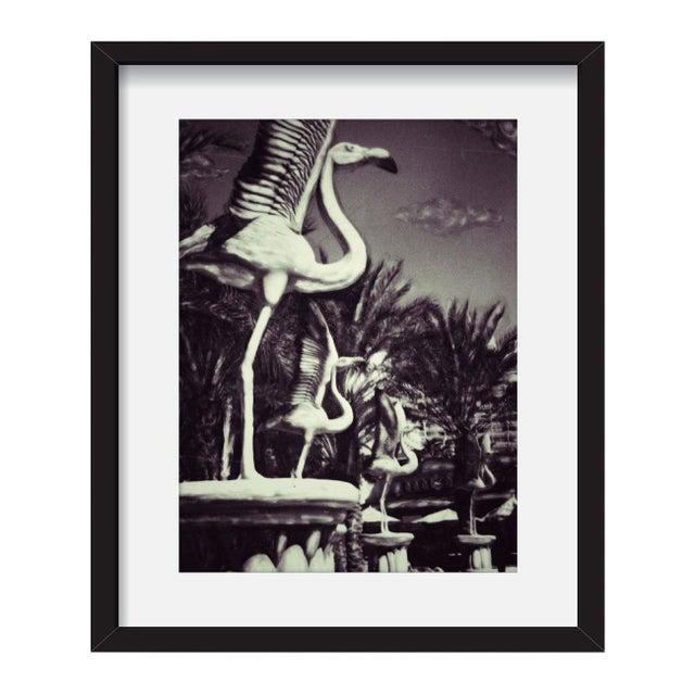 "Patricia McDonald ""Flamingoes"" Framed Photo Print - Image 1 of 3"