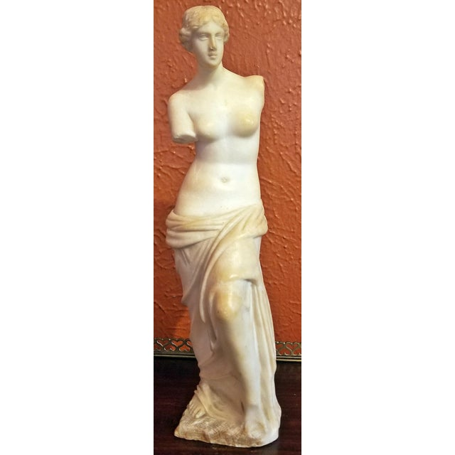 19c Italian Marble Figurine of Venus De Milo For Sale In Dallas - Image 6 of 12