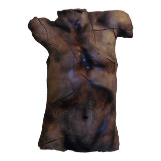 Plaster Male Torso Sculpture Life Size Signed Ritter For Sale