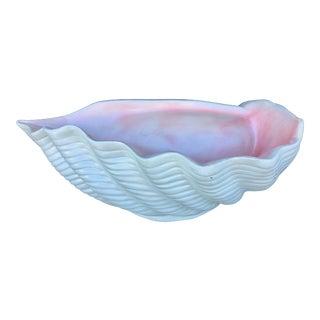 XL Fiberglass Seashell