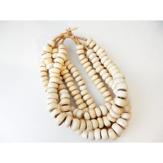Currency Bone Trade Beads - Set of 5 - Image 3 of 7