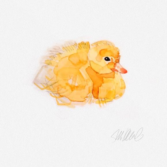 Resting Duckling Print - Image 2 of 3
