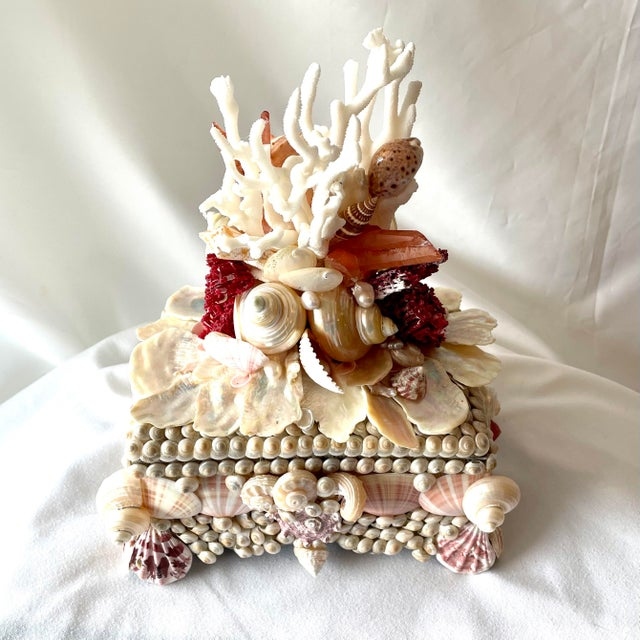 2020s Seashell and Coral Small Box For Sale - Image 5 of 7