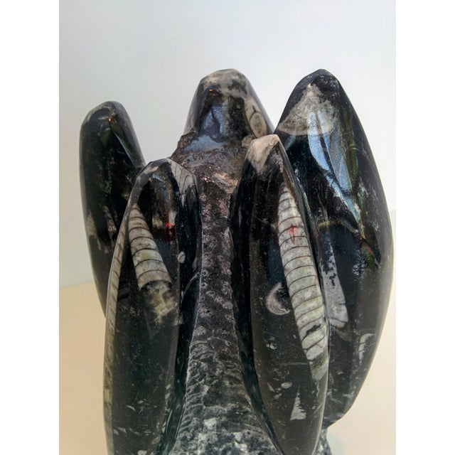 White Orthoceras Fossil Sculpture For Sale - Image 8 of 10
