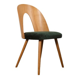 Ash Dining Chairs by Antonin Suman for Tatra For Sale