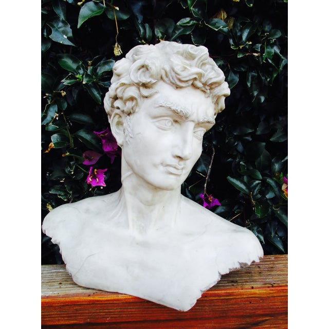 Neoclassical Vintage Cast Resin Bust - Image 4 of 11