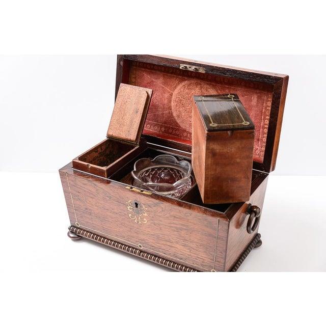 Regency tea caddy For Sale - Image 9 of 11