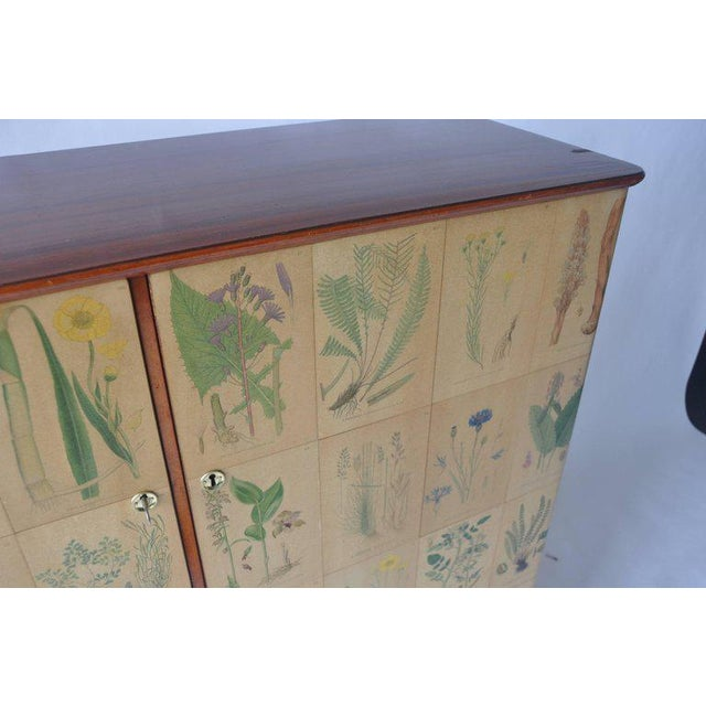 Early 20th Century 1950s Botanical Print Swedish Cabinet For Sale - Image 5 of 7