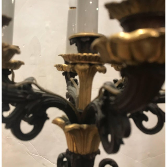 Louis XV 19th Century Louis XV Bronze and Ormolu Electrified Candelabra For Sale - Image 3 of 11