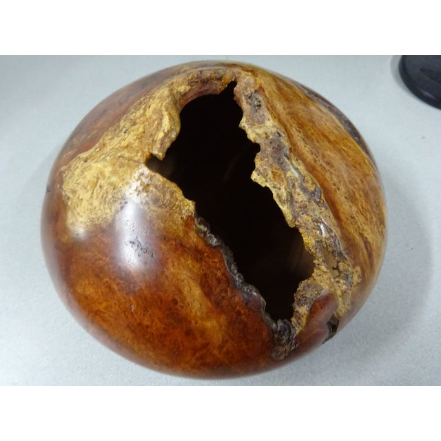 Late 20th Century Cherry Wood Burl Hollow Form Bowl / Vase | Ron Pessolano For Sale - Image 13 of 13