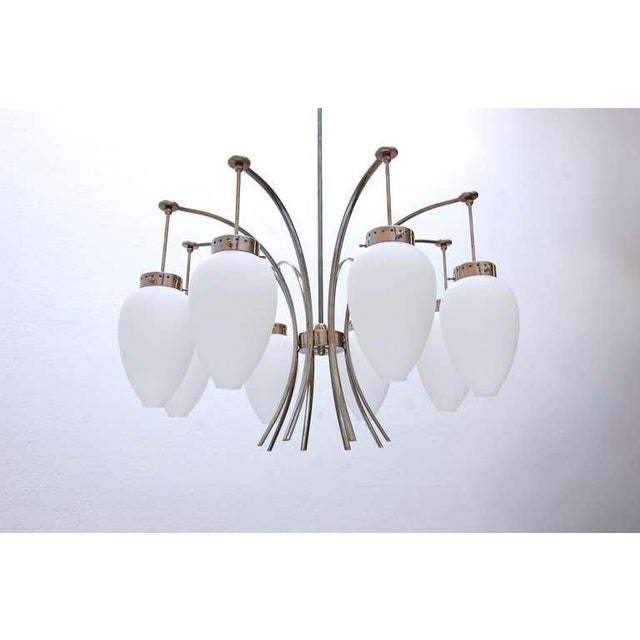 1950s Large Italian Chandelier For Sale - Image 5 of 11