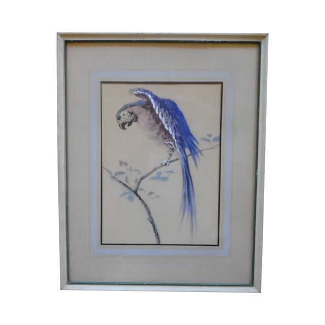 Framed Parrot Picture - Image 1 of 6