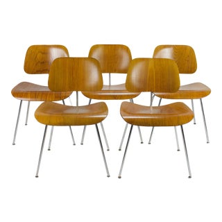 1940s Vintage Evans Production Dcm Chairs by Charles Eames- Set of 5 For Sale