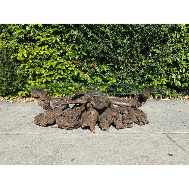 Brown Oval Glass Top Driftwood/Burl Coffee Table For Sale - Image 8 of 8