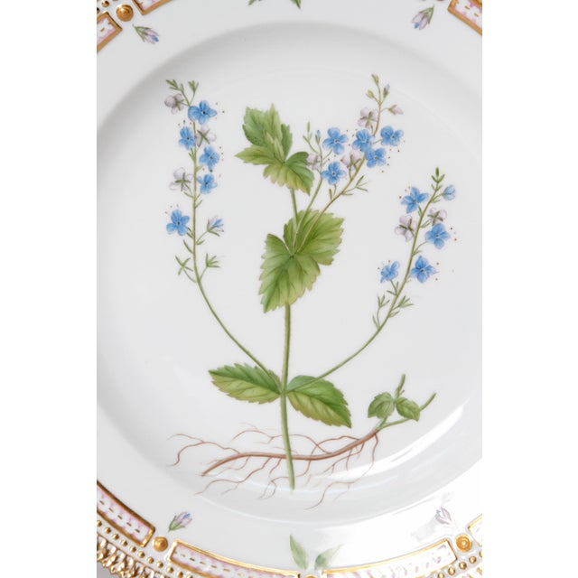 Neoclassical Pair of Flora Danica Plates by Royal Copenhagen #20/3573 and #20/3549 For Sale - Image 3 of 13