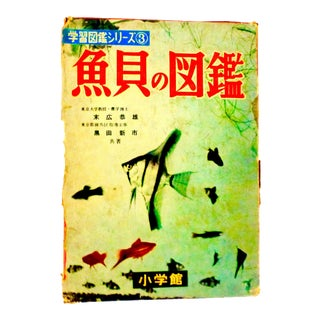 1956 Picture Book of Fish and Sea Life, Japan Book For Sale