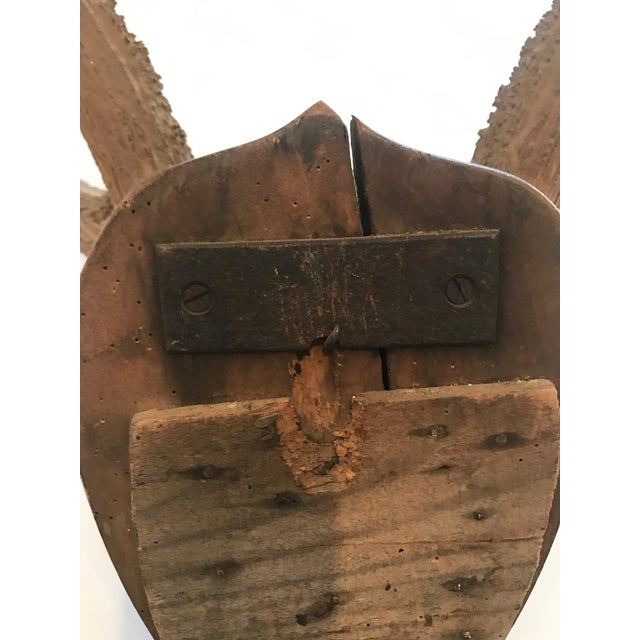 Late 20th Century Mounted Horn Plaque For Sale - Image 9 of 13