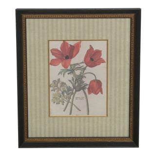 1990s Framed & Matted Tulip Print For Sale