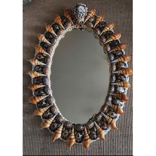 "Small oval hall or powder-room mirror decorated with Grade A seashells and guaranteed for 5 years. Quality 1/4"" plate..."