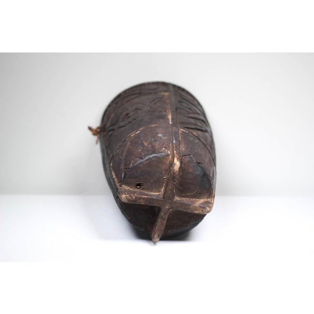 Early 20th C. Phillipino Betel Nut Wood Vessel - Image 4 of 5