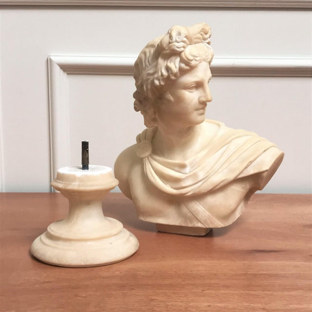 Stone 19th Century Italian Grand Tour Souvenir Bust of the Apollo Belvedere For Sale - Image 7 of 13
