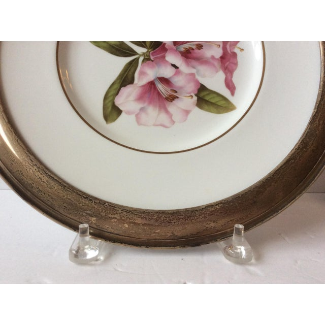 Cottage Spode Floral Plate With Shreve Sterling Silver Rim For Sale - Image 3 of 6