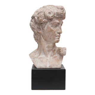Mid Century Ceramic Bust of David For Sale