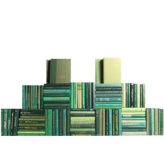 Modern Boxwood Book Wall : Set of One Hundred Decorative Books For Sale