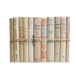 Midcentury Beach ColorPak -Decorative Neutral Books