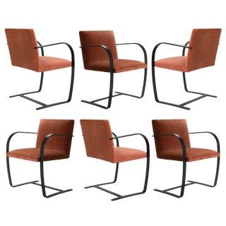 Brno Flat-Bar Chairs in Rust Velvet, Obsidian Matte Frame - Set of 6 For Sale