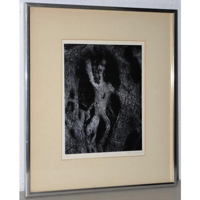 Aaron Siskind (American, 1903-1991) Black & White Photograph C.1970 For Sale - Image 9 of 9