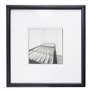 """Joan Fontcuberta Photography """"Conills de Mendel"""""""