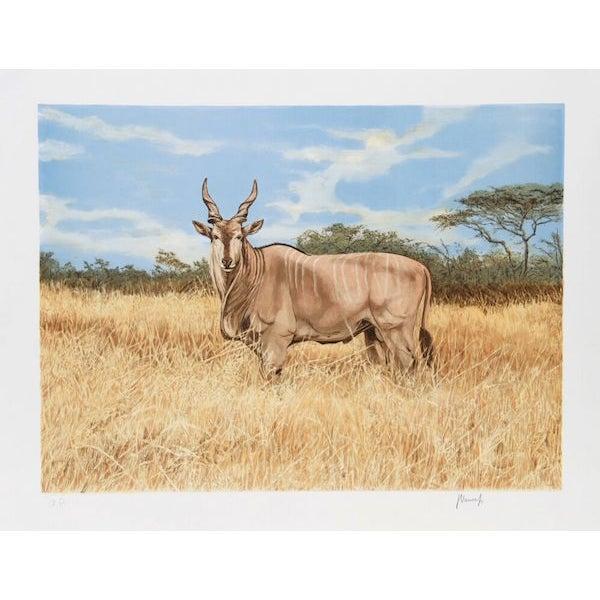"Joseph Vance, ""Antelope,"" Lithograph For Sale"