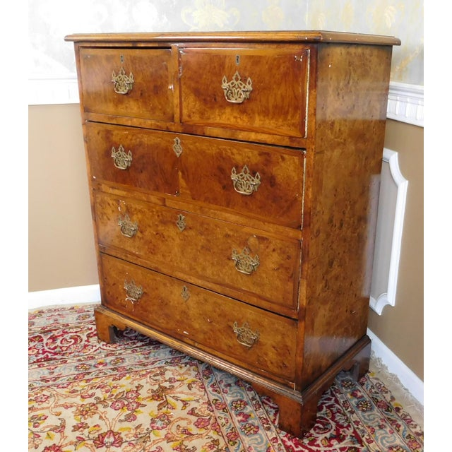Antique American Walnut & Elm Bedroom Chest - Image 9 of 10