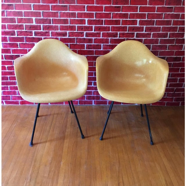 1950's Herman Miller Eames Molded Fiberglass Chairs - A Pair - Image 3 of 11