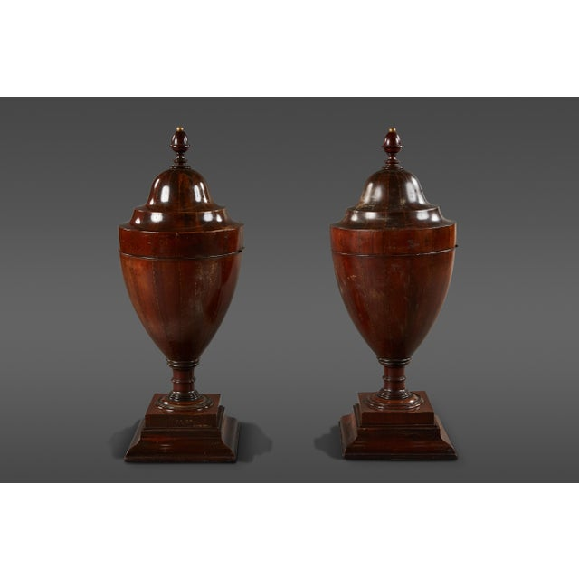 Rare Pair of Large Walnut Late 18th Century English Wine Coolers For Sale - Image 10 of 10