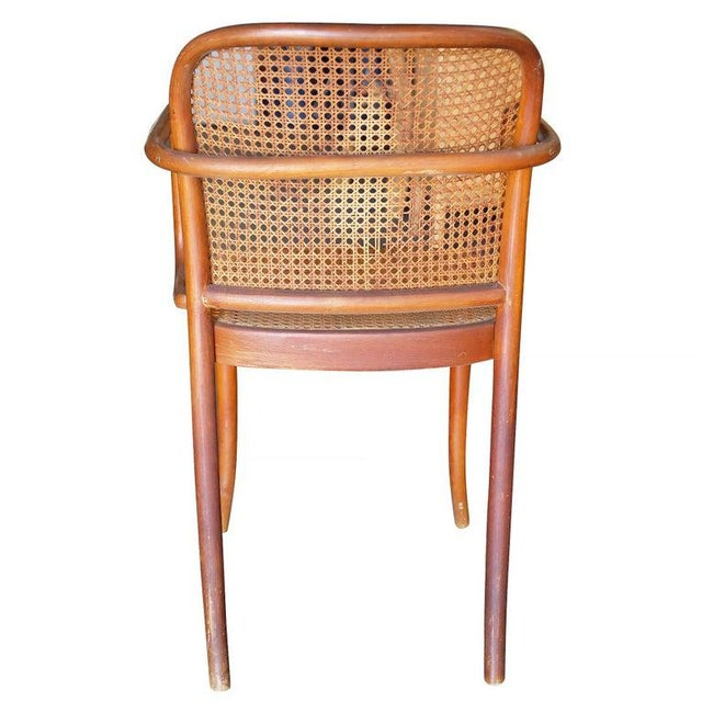 Josef Hoffmann Josef Hoffmann for Stendig Bentwood Cane Dining Chairs, Set of Six For Sale - Image 4 of 7