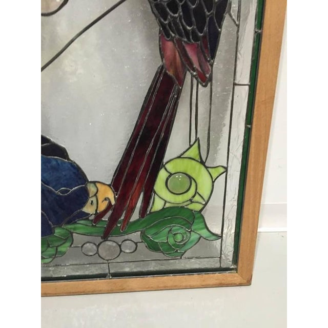 Glass Stained Glass of Two Parrots in Wood Frame For Sale - Image 7 of 10