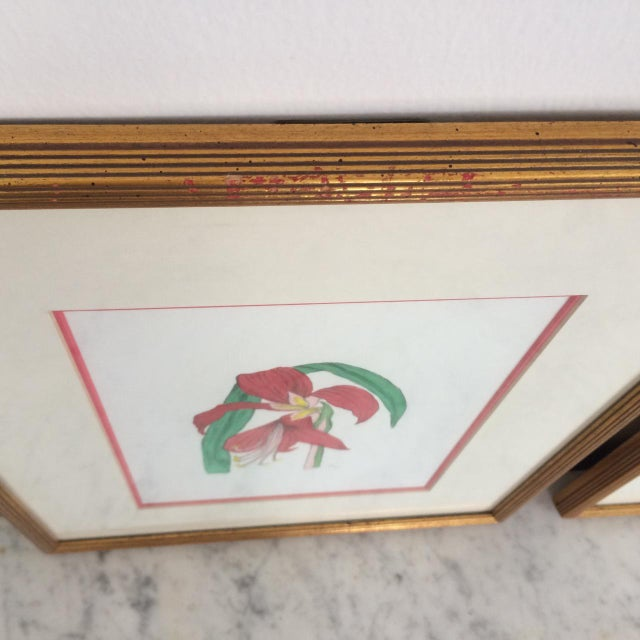 Green Pair of Botanical Chelsea House Flower Study Gallery Wall Drawings in Matching Gilt Frames For Sale - Image 8 of 13