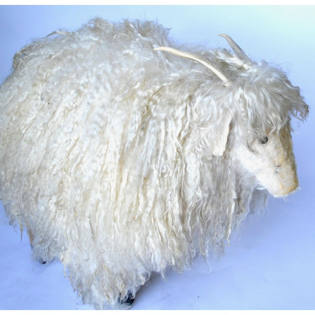 A wonderful horned ram with wood frame covered in heavy angora sheepskin with real horns and button eyes to make up a nice...