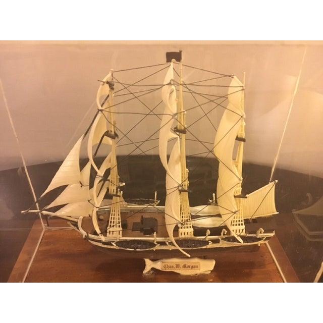Model Ship in Case - Image 3 of 5