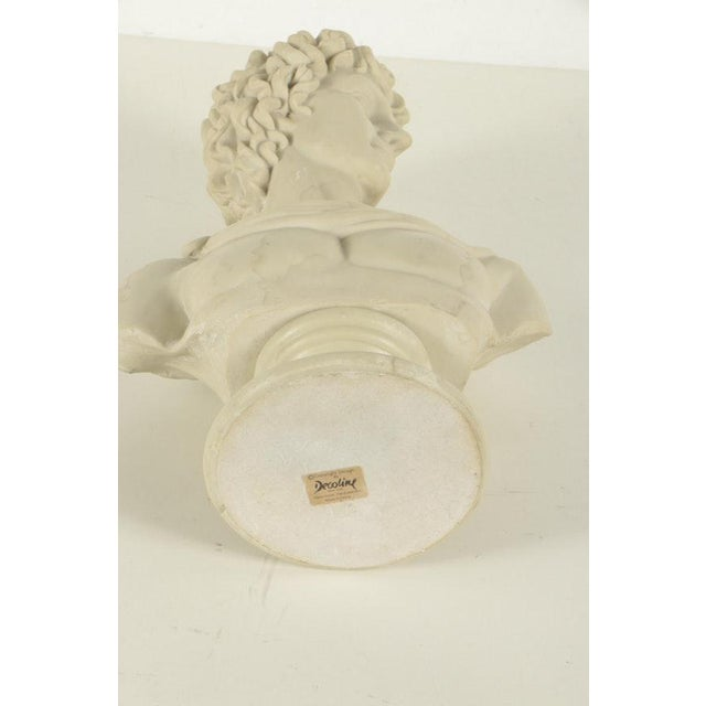 Contemporary Resin Bust After Apollo Belvedere For Sale In Los Angeles - Image 6 of 7