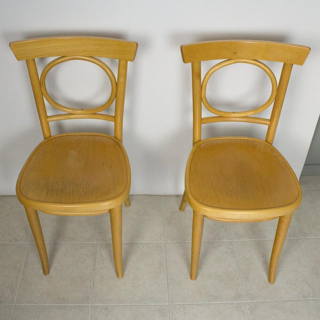 Wood Radomsko Thonet Bentwood Cafe Chairs - Set of 4 For Sale - Image 7 of 10