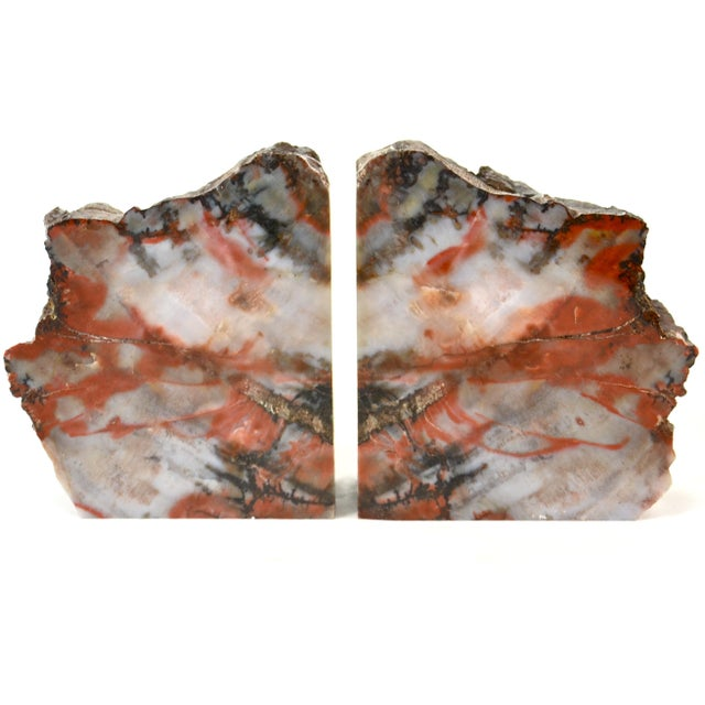 Red Iron Red Petrified Wood Slice Bookends - A Pair For Sale - Image 8 of 8